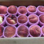 桃を長〜く食べるために桃前線を追いかける。